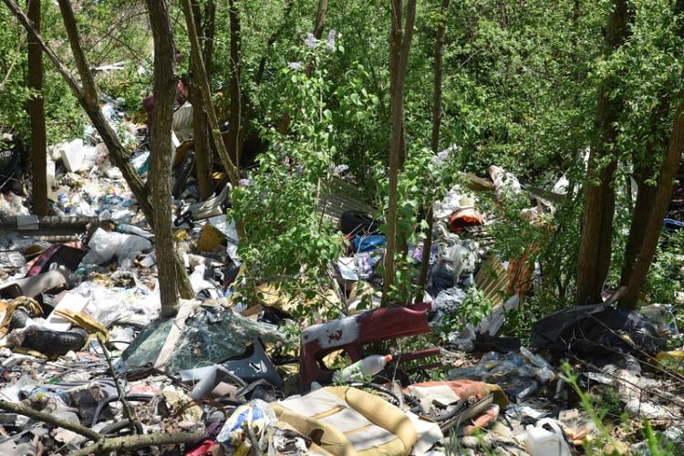 Magasból zúdítják a dögöket és a hulladékot egy vasi erdőben