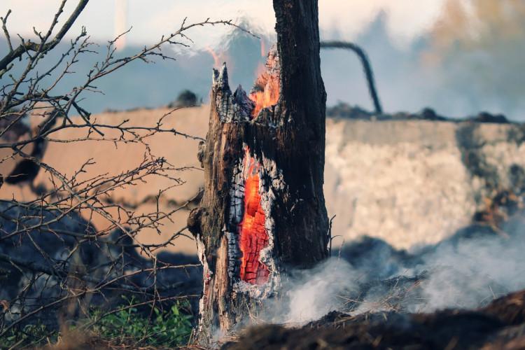 A szabadtéri tüzek megelőzésére fókuszál a legújabb tűzvédelmi teszt